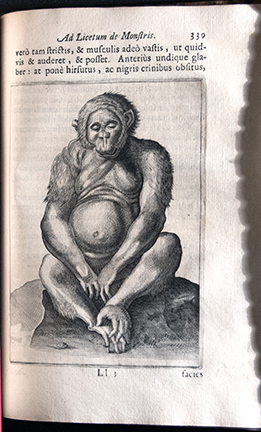Fortunius Licetus De Monstris