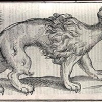 The Historie of Fovre-Footed Beastes