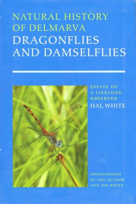 Natural history of Delmarva: Dragonflies and Damselflies : Essays of a Lifelong Observer
