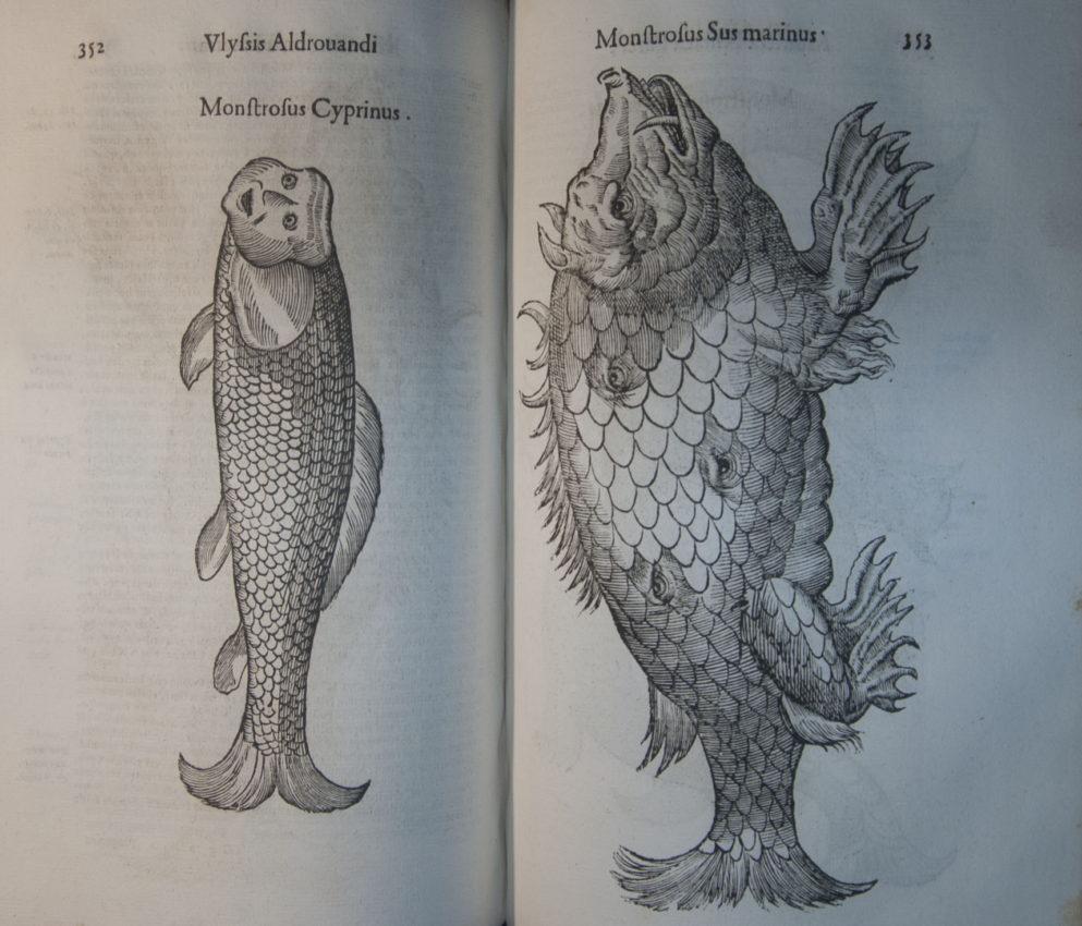Vlyssis Aldrouandi Patricii Bononiensis Monstrorum Historia: Cum Paralipomenis Historiae Omnium Animalium. Bononiae: Typis Nicolai Tebaldini, 1642.