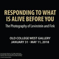 Responding to What is Alive Before You: The Photography of Levinstein and Fink